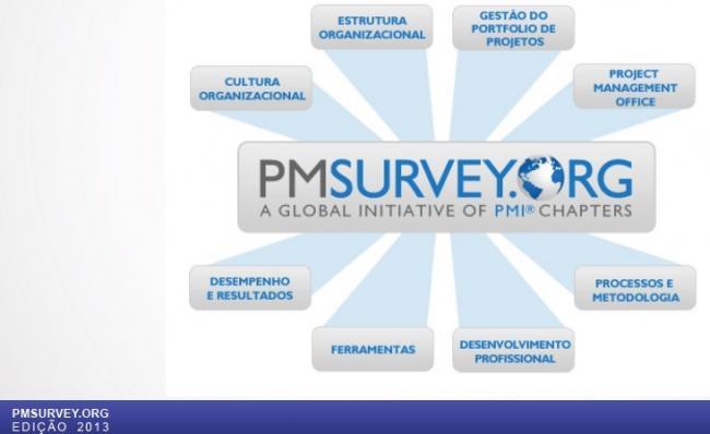 PM SURVEY - Resultados da edição 2013
